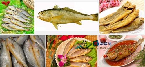 南戴河海鲜黄花鱼
